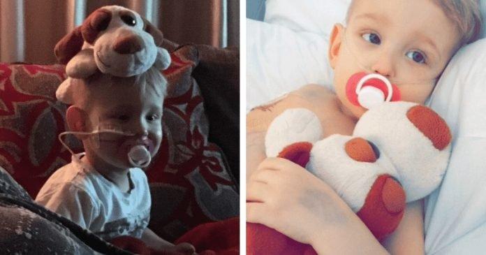 """Az 5 éves rákos kisfiú bocsánatot kért az édesanyjától, mielőtt meghalt volna a szülei karjai közt: """"Annyira sajnálom"""""""